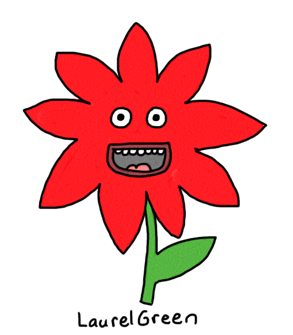 a drawing of a poinsettia
